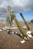 Spurn Point Humber Estuary royalty free stock images