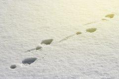 Spurnstiefel auf weißer Schneenahaufnahme, Draufsicht, getont stockfotos