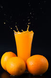 Spurting juice and citrus fruits Royalty Free Stock Photo