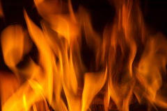 Spurts of flame. Fire in fireplace. Fire background. Blazing Bonfire. Firewood burns in a fireplace. Fire blaze Stock Photography