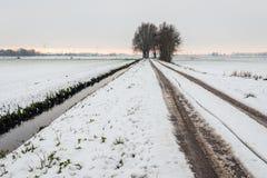 Spurweiten im Schnee Lizenzfreie Stockfotografie
