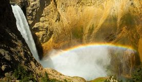 spuszczają Yellowstone falls obrazy royalty free