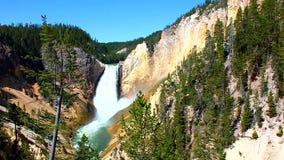 spuszczają Yellowstone falls zbiory wideo