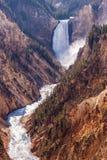 spuszczają Yellowstone falls zdjęcia royalty free