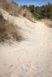 Sputo di Curonian del parco nazionale Immagini Stock Libere da Diritti