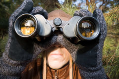 Spy. Looking in binoculars from pine branch Royalty Free Stock Photo