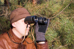 Spy. Looking in binoculars from pine branch Stock Photos