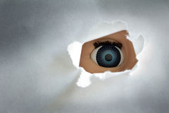 Spy eye Stock Photography