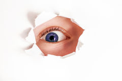 Spy eye looking through paper hole. curious and nosy child Stock Image