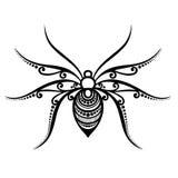 Spyder dell'insetto Immagini Stock