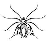 Spyder dell'insetto Immagini Stock Libere da Diritti