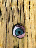 Spying eye. Person looking out from the corner of their eye through a hole in a fence Royalty Free Stock Image