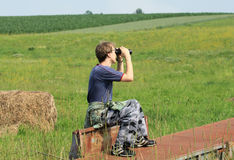 Spying in nature Stock Photography