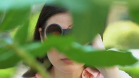 Spying young woman looking through binoculars standing among trees, interest. Stock footage stock footage