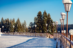 Sqare with snow and street lamps. Near pine forest at winter Stock Images