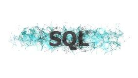 SQL database concept with colorful plexus design