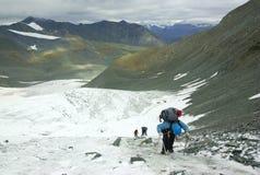 Squadra degli scalatori del ghiacciaio Fotografia Stock