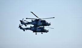 Squadra della visualizzazione dell'elicottero dei gatti neri Fotografia Stock Libera da Diritti