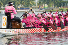 Squadra delle signore della corsa di barca del drago Fotografia Stock