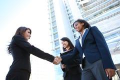Squadra di donna varia di affari Immagine Stock