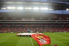 Squadra di football americano di Benfica - lega 2014 dei campioni immagini stock