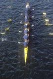 Squadra di Rowers femminili, Fotografia Stock Libera da Diritti