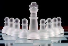 squadra di scacchi Fotografie Stock Libere da Diritti