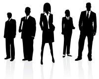 Squadra professionale di affari illustrazione vettoriale