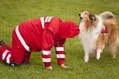 Squadrone del cane di salvataggio Immagine Stock Libera da Diritti