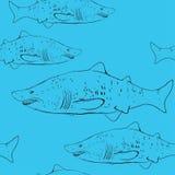 Squali nell'acqua Profilo nero sui precedenti blu Sketc Fotografia Stock