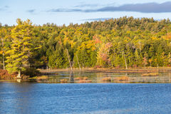 Squam Lakeside Royaltyfri Fotografi