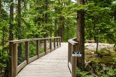 Squamish Canada July 9, 2017 - scenic view of walking trail in the Sea to Sky Gondola park in Squamish. British Columbia Royalty Free Stock Photography