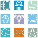 Square animal icons Stock Photos