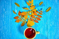 Square autumn picture with cup of hot tea near autumn leaves on blue background. Top view stock images