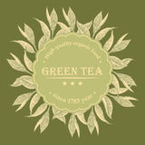 Square Background Tea Green Royalty Free Stock Photos