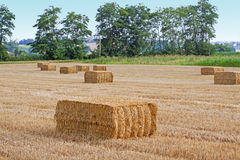 Square bales Royalty Free Stock Photo