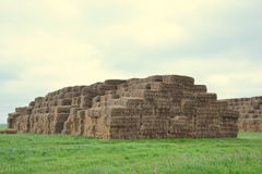 Square bales Stock Photos