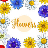 Square banner, greeting card with summer flowers, place for text. Square banner, greeting card with top view summer flowers and place for text, sketch vector Royalty Free Stock Photo
