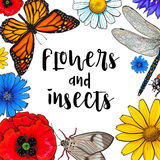 Square banner - insects and flowers with round place for text Stock Images