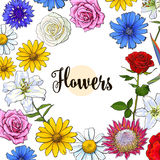 Square banner various flowers with round place for text Royalty Free Stock Images