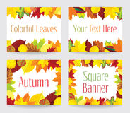Square banners with autumn leaves. Four vector square banners with autumn leaves vector illustration