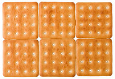 Square biscuits Stock Photography