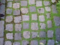 Square brick path Royalty Free Stock Photos