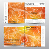 Square brochure template with molecular structure. Geometric abstract background. Medicine, science, technology. Vector Royalty Free Stock Photography