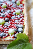 Square cake with berries in powdered sugar, tart Stock Photography