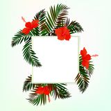 Square card with palm leaves Stock Photography