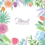 Square card template decorated with border or frame made of elegant blooming flowers and leaves. Floral background with. Beautiful realistic flowering plants Stock Image