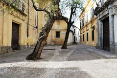Square of Cardinal Salazar, Jewish quarter, Cordova. Andalusia. Spain. Stock Images
