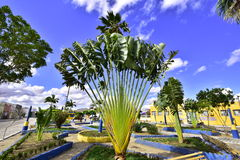 Square of the city of Porto Real do Colégio. State of Alagoas. Brazil. The beautiful square of the small town of Porto real school royalty free stock image