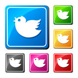 Square color bird icon. Royalty Free Stock Images